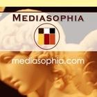 Mediasophia, a Web Design Company in Miami, Announces New Custom WordPress Design Packages
